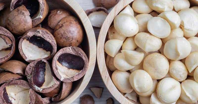 Cách tách vỏ hạt mắc ca, cách ăn hạt mắc ca , ai cũng nên biết !