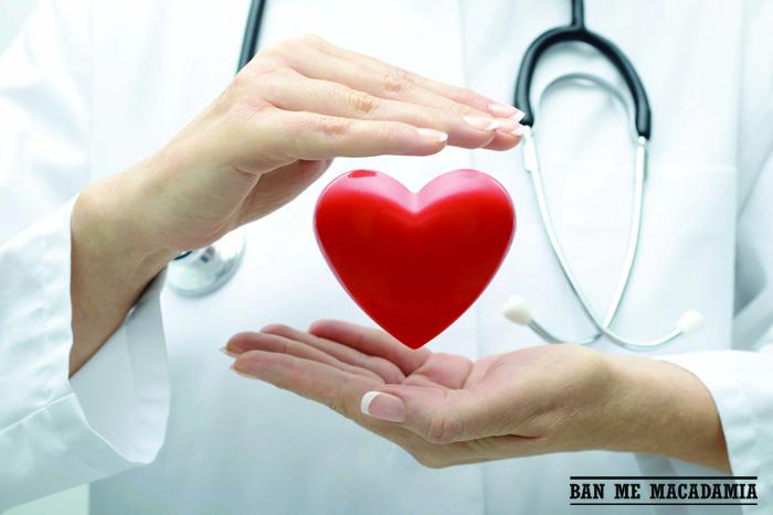 Tác dụng của hạt mắc ca : giảm nguy cơ đột quỵ vì tim mạch