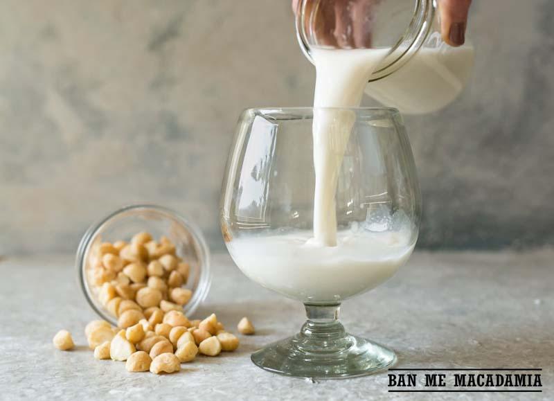 Cách làm sữa macca ngon tuyệt dành cho người ăn kiêng